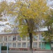 Ио главы энгельсского муниципального района татьяна петровская приняла участие в торжественном мероприятии