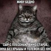 КОТ КОТИК on My World.