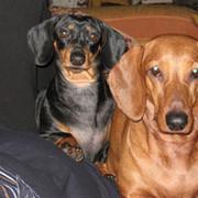 Yulia гафина on My World.